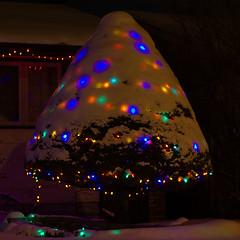 UFO Tree? (Bruce Guenter) Tags: christmas lights night snow tree winter
