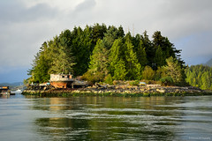 Strawberry Island Float Home Community in Tofino (SonjaPetersonPh♡tography) Tags: tofino clayoquotsound ocean longbeach tourists water westcoastvancouverisland vancouverisland nature surfing fisherman whalewatching britishcolumbia canada nikond5200 nikon 2016 westcoast boats boating harbour pacificrimnationalparkreserve bcparks