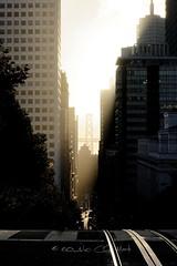 Good morning SF (Claude-Olivier Marti) Tags: etatsunis usa unitedstates sanfrancisco california californie westcoast fog brouillard leverdesoleil sunrise