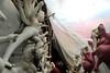 "The Making of Durga...... Durga Puja in Kolkata 2016 (pallab seth) Tags: idol makingofanidol streetart artisans durga puja 2016 kalighat kolkata festival bengal india bengalartisans clay durgaidol tradition durgapuja art culture দুর্গোৎসব beautifulplaces westbengal best digitalart calcutta beautiful highresolution image goddess ""durga kolkata"" light decoration sculpture worship hinduism traditional religion religious deity দুর্গাপূজা হস্তশিল্প samsungnx85mmf14edssalens samsungnx1"