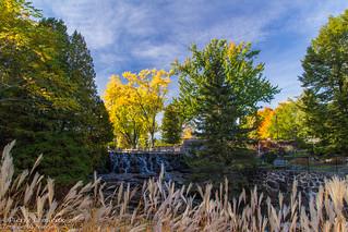 Parc des Moulins, couleurs d'automne