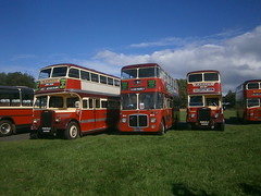 467, 854 and 507 @ Donington Park (ianjpoole) Tags: bartons leyland titan pd1 duple jnn384 467 northern counties aec regent 5 854fnn 854 pd1a lowbridge jvo230 507 showbus 2016 donington park