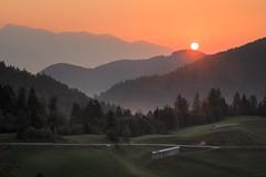 Sunrise at Countryside (Dejan Hudoletnjak) Tags: sunrise landscape countryside nature country forest hills toplars road