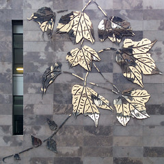 (Torganiel) Tags: window wall architecture facade leaf montreal 2d g10 torganiel
