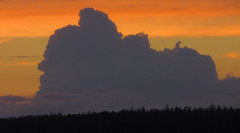sunset & large clouds, telling a story (eagle1effi) Tags: city sunset sun june germany deutschland flickr tramonto sonnenuntergang sunsets stadt tuebingen tübingen puestadelsol tubingen coucherdusoleil württemberg badenwuerttemberg 2013 tubinga cameraback eagle1effi schönbuchrand canonpowershotsx1is dibenga stadttübingen tübingenamneckar dibengâ tubingue