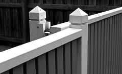Guardians (Padmacara) Tags: g11 bw monochrome contemplative diagonal posts gate fence