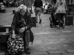 Creature Comforts (Leanne Boulton) Tags: monochrome outdoor urban street candid portrait streetphotography portraiture candidstreetphotography streetlife old age aged elderly woman female face facial expression smoke smoker smoking cigarette coffee bench puppy pet dog pooch canine creature comfort tone texture detail depth natural light shade shadow city scene human life living humanity people society culture canon 7d 50mm black white blackwhite bw mono blackandwhite glasgow scotland uk