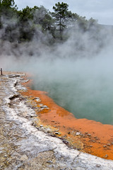 New Zealand. Rotorua Thermal Wonderland (A.N.T 24) Tags: newzealand thermalwonderland northisland nikon travelphotography photography roadtrip