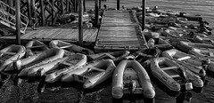 ...confusion... (jamesmerecki) Tags: confused kittery point me kitterypoint maine bw blackwhite dinghy boats pier deck dusk sunset sunsetting boater sailboats