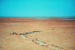 Stranded (megorgar) Tags: beach strand nordsee northsea void leere trail spur sand nikcollection colorefexpro4 dfine2 nikon d700 nikkor 105mm micro