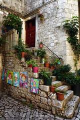 Trogir (georgiek2008) Tags: croatia trogir stone ancient architecture venetian steps pots potplants