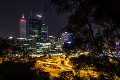 Perth from Kings Park (Jared Beaney) Tags: perth perthcity perthcityviews kingsparkviews kingspark westernaustralia nightphotography night longexposure