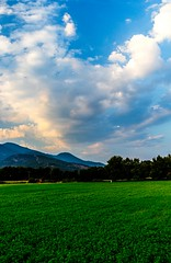 Oxygen (Panos Agelos) Tags: greece macedonia flowers clouds green life summer 2016 nature sky sun goout oxygen liveyourlife thisismyeurope canon canon700d travel travelling travelphotography love makedonia photography greatcapturesgreece kavala blue mountains moustheni follow ilovekavala