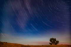 Nelson Creek Star Trails (Tony Webster) Tags: charlesmrussellnationalwildliferefuge circle dryarm fortpeck fortpecklake missouririver montana nelsoncreekrecreationarea campground camping campsite longexposure night startrails unitedstates us