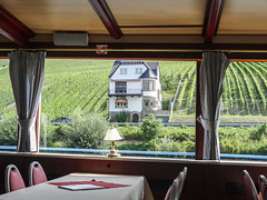 Croisire sur la Moselle (CORMA) Tags: allemagne deutschland germany moselle mosel 2016 europe europa vineyard vignoble weinberg