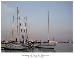 Barques (steelmancat) Tags: barques cambrils port veler canon 5d mark ii 281235