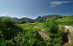 Le Caroux Ahead (davidpemberton78) Tags: scenery mountain profile le caroux lhrault languedocroussillon