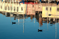 """3 ducks glide across the charming reflections of Quai St Etienne, Vieux Bassin, Honfleur, Normandy, France (grumpybaldprof) Tags: """"vieuxbassin"""" """"oldharbour"""" honfleur normandie normandy france """"quaistecatherine"""" """"quaiquarantaine"""" quai """"quaistetienne"""" """"stecatherine"""" """"lalieutenance"""" quarantaine water boats sails ships harbour historic old ancient monument picturesque restaurants bars town port colour lights reflection architecture buildings mooring sailing stone collombage halftimbered yachts ducks reflections glide wetreflections waterreflections trio tamron 16300 16300mm """"tamron16300mmf3563diiivcpzdb016"""" hdr"""