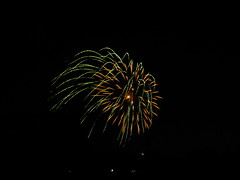 DSCN3006 (Yoru Tsukino) Tags: fireworks canada day 2016 night fire colorful colourful annual yearly