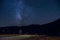 Reach for the stars (Dreams through Reality) Tags: agrafa beautiful blue fall inspirational landscape milkyway nature olympusem10 outdoor trees amazing astrophotography contrast forest hill longexposure mountain nightphotography nightsky sky stars