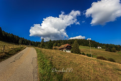 Blackforest at a beautiful midday (Double.D - Photography) Tags: blackforest schluchsee schwarzwald landscape landschaft midday mittag canon canon600d doubled clouds wolken sky blue himmel sigma 1020mm wiese meadow feld field haus house forest wald hiking