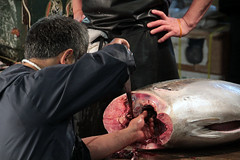 Tsukiji Fish Market | Tuna Work (Toni Kaarttinen) Tags: japan  japonia    jap japonsko jaapan  japani japon xapn    japn jepang an tseapin giappone  japna japonija  japo  japonska japn hapon  japonya nht bn tokyo tokio japanese tsukijifishmarket tsukiji fish market fishmarket tuna man cutting
