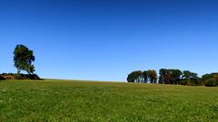 Blue is open (Vitatrix) Tags: landschaft landscape natur nature outdoor bume wiese himmel pflanzen badenwrttemberg schwbische alb
