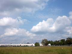 Sky Above Lowe's. (dccradio) Tags: nc northcarolina robesoncounty afternoon walk outdoors tree trees lumberton lowes building greenery grass lawn sky clouds bluesky