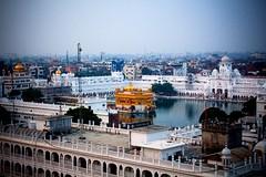 #Amritsar #Goldentemple #facebook #Instagram #Canonshot  (manishchandrasrivastava) Tags: amritsar goldentemple facebook instagram canonshot