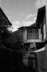 (stray light) (Dinasty_Oomae) Tags: leica leicaiiia leica3a  iiia 3a   blackandwhite blackwhite monochrome bw outdoor   hiroshima   kure  backstreet
