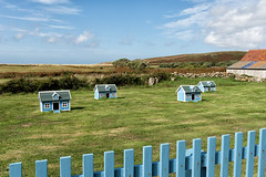 Posh Chicken Coops, Bryher (Kevin James Bezant) Tags: islesofscilly ios bryher