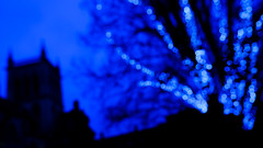 Bokeh 1/3 (St John's) (Sir Cam) Tags: cambridge cambridgeuniversity stjohnscollege night blue bokeh tree camdiary sircam chapel focus