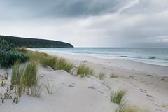Antechamber Bay (mezuni) Tags: antechamberbay southaustralia australia au kangarooisland authenticki visitsa ki