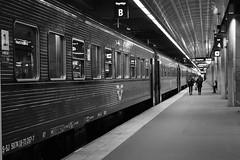 Stockholms Centralstation Spr 4 (Annica Spjuth) Tags: fotosondag fs161016 rad tg perrong