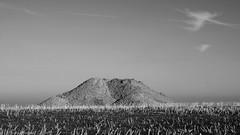 ground excavation | Erdaushub (rainbowcave) Tags: hill rapeseed field hgel erdhgel rapsfeld sky clouds mound