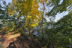 Lakeshore (ibm4381) Tags: madison mendota lakeshore