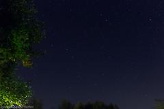 IMG_1472 (SylvainDupuyPhotos) Tags: grandeourse toilepolaire polaris canon550d sky night paysagetoil widefield