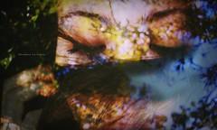 Salir y entregarse al jardn... (Conserva tus Colores) Tags: colores conservatuscolores chile dobleexposicin doubleexposure beautiful bokeh naturaleza nature naturelovers girl me self love colors lovenature luznatural portrait canon