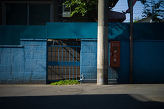 (noji-ichi) Tags: leica blue light shadow japan wall fence 50mm tokyo     m9  summar leitz