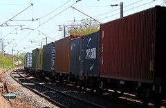 Intermodal Shipping Containers (Stuart Axe) Tags: city uk greatbritain england train unitedkingdom box traction rail railway loco trains container evergreen cast po gb sealand locomotive springfield containership hyundai railways essex boxs chm yangming msc skoda hanjin boreham chelmsford ger shippingcontainer kline freighttrain ditton newhall hapaglloyd cosco freightliner maersk intermodal greateastern nedlloyd chinashipping geml coatbridge electriclocomotive traffordpark uniglory bigmetalbox gbrf countytown countyofessex ponedlloyd greateasternmainline unlimitedphotos crewebasfordhall lawleystreet columbusline cityofchelmsford generalslane newhallhalt