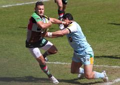 IMG_0756 (andys1616) Tags: northampton rugby may saints stoop aviva premiership twickenham quins harlequins rugbyunion 2013