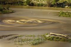 Vórtice (Andrés Lozano Bojadós) Tags: río cañas tiempo remolino vórtice ríollobregat estudio33 estudio33fotografía