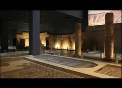 متحف زيوغما
