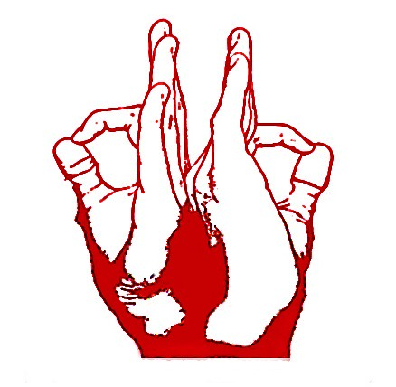 DhoomBros Hand Sign Logo