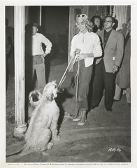 DOROTHY MALONE UNIVERSAL W/DOGS  (1957) (addie65) Tags: dogs vintage angels hollywood 1950s 1957 vintageclothes newsphoto universalstudio afghans tarnished vintagedress hollywoodland classicactor vintagehair classicfilm classichollywood vintagehollywood dorothymalone universalinternational