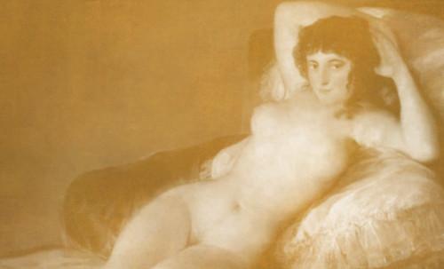 "Majas, homenajes de Francisco de Goya y Lucientes (1802), Eugéne Delacroix (1826), Amadeo Modigliani (1916), Pablo Picasso (1906), (1931), (1959), (1964). • <a style=""font-size:0.8em;"" href=""http://www.flickr.com/photos/30735181@N00/8746850827/"" target=""_blank"">View on Flickr</a>"