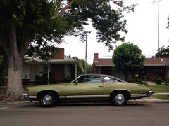 Avocado (misterbigidea) Tags: street city urban tree green classic beauty car vintage landscape avocado view parking style neighborhood chrome solo shade hotwheels americana parked pontiac roadside 1972 stockton luxury coupe sleek lemans musclecar