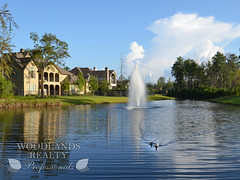 parks in the woodlands tx (Woodlands Realty Pros) Tags: houses house nature woodlands texas parks houston realty thewoodlands housesforsale realestatehomes realestatetexas realestatewoodlands realestatehouston woodlandshouses