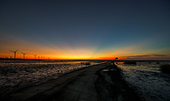 (Digital_trance) Tags: landscape nature sunset     oyster  clam    seafood  windmill star  cloud   venus  jupiter moon    crab    taiwan changhua changhuataiwan      startrails