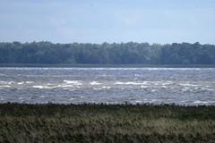 DSC_0408 (sauliusjulius) Tags: rusns sala nemuno delta the neman river landkreis heydekrug memelland